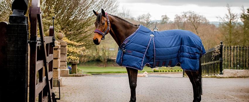 Horseware   Herbst & Winter 2021/2022