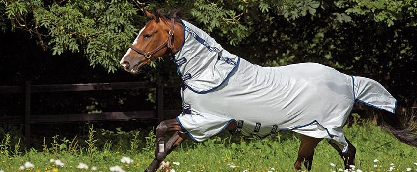 Horseware   Sommer 2021