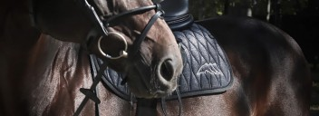 Equiline   Shiny-Kollektion Pferd