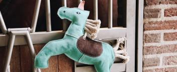 Pferdefutter & -Spielzeug