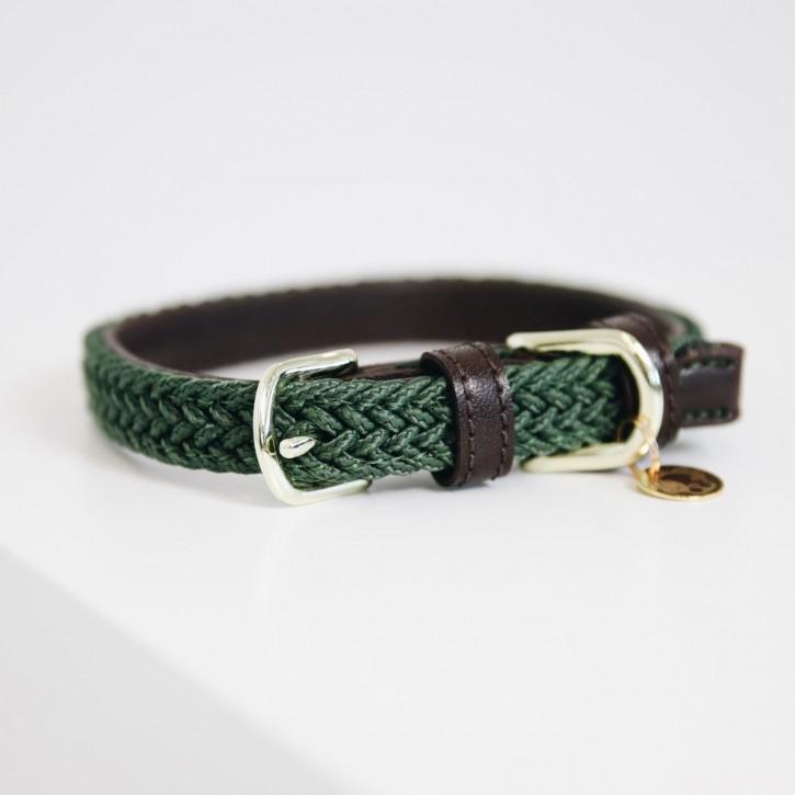 Kentucky Hundehalsband Nylon olivgrün