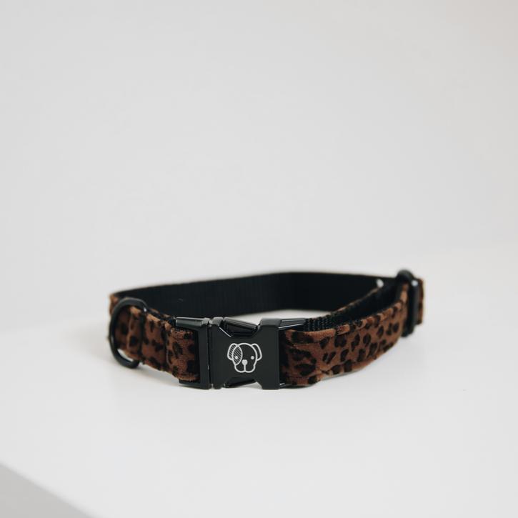 Kentucky Hundehalsband Leopard braun