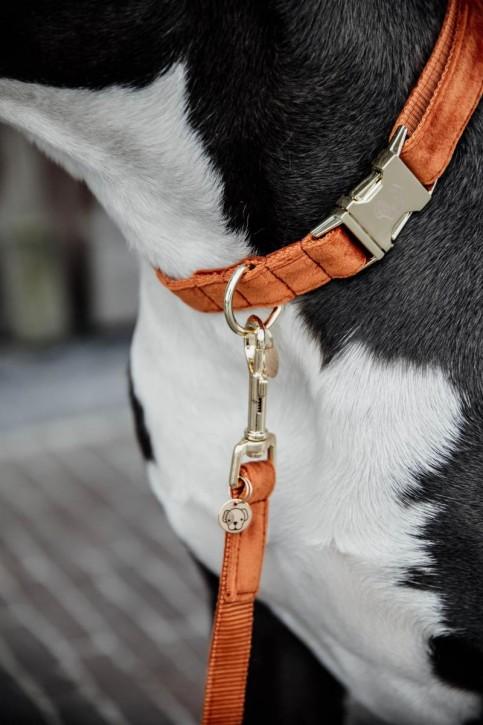 Kentucky Hundeleine Velvet orange 120cm