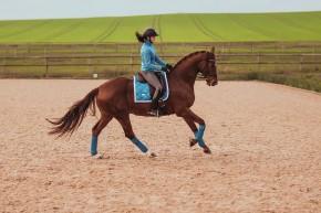 Equestrian Stockholm Dressur Schabracke Parisian Blue Full